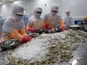 Les exportations vietnamiennes de crevettes vers les États-Unis font face à de nombreux défis