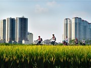 Expo de photos sur la vie en banlieue de Hanoï