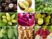 Le Moyen-Orient, un marché potentiel pour les produits agricoles vietnamiens