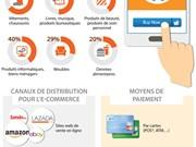 [Infographie] Les achats en ligne de plus en plus populaires