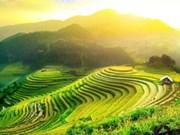 Sur la route des rizières en terrasses à valeur patrimoniale