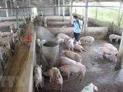 Publication du système d'information sur les maladies animales en ligne