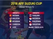Le Vietnam a obtenu les droits de diffusion des matchs de l'AFF Suzuki Cup 2018