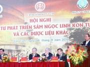 Le PM participe à une conférence sur le ginseng de Ngoc Linh à Kon Tum