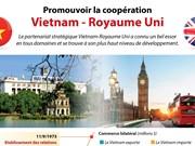 [Infographie] Promouvoir la coopération Vietnam - Royaume Uni