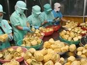 Exportations de produits agricoles: le Vietnam au 2e rang en Asie du Sud-Est, 15e dans le monde