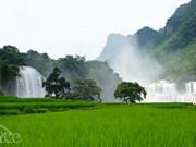 Cao Bang : bientôt la 2e fête touristique de la chute d'eau de Ban Giôc