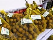 Accélérer la présentation des produits vietnamiens au Mozambique et au Madagascar