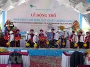 Construction d'une usine de silice à Thua Thien-Hue