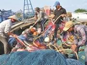 L'avertissement ''carte jaune'' affecte l'exportation de fruits de mer vietnamiens vers l'UE