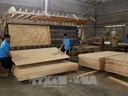 Les exportations de produits sylvicoles atteignent 6,64 milliards de dollars en neuf mois