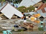 Aucune information sur les Vietnamiens morts ou blessés lors du séisme et du tsunami en Indonésie