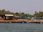 Kien Giang : des exportations au beau fixe