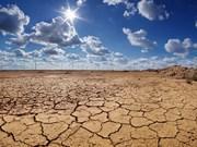 Le Vietnam actif dans la résilience au changement climatique