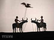 Belles images du 5e Festival international des marionnettes à Hanoï