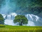 Cao Bang : ouverture de la 2e fête touristique de la cascade de Ban Gioc