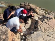 La Hongrie soutient Phu Yen dans l'exploitation d'une source d'eau thermale