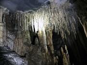 """Quang Binh: Lancement du nouveau circuit touristique """"Découvrez les grottes Vom et Gieng Vooc"""""""