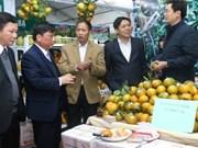 Promotion du commerce des spécialités régionales du Vietnam