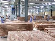 VPA/FLEGT: construction d'un marché de bois transparent et équitable