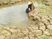 Les Pays-Bas aident à améliorer les capacités d'approvisionnement en eau dans le delta du Mékong
