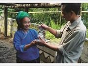 Les artisans-argentiers de Hà Giang