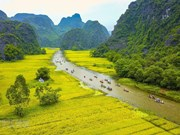 Ninh Binh continue de préserver le complexe paysager de Trang An
