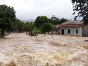 Son La : des maisons inondées après la tempête Wipha