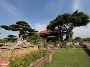 La vitalité du village de créatures ornementales de Hong Van