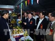 La 2e fête des oranges de Hung Yen