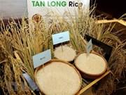 L'exportation de riz prévoit d'atteindre plus de 3,15 milliards de dollars en 2018