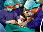 Succès des greffes de poumon et de rein à partir de donneur en mort cérébrale