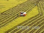La visioconférence pour faire le bilan du secteur agricole en 2018
