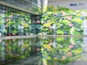 Design: deux fresques à l'aéroport de Noi Bai primés lors d'un concours en Italie