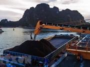 Vinacomin produit 14,86 millions de tonnes de charbon brut depuis janvier
