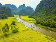 Ninh Binh: destination attrayante des touristes