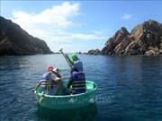Protéger les récifs coralliens côtiers à Quy Nhon