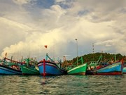 Ba Ria-Vung Tau durcit le ton contre la pêche INN