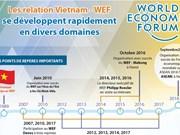 Les relation Vietnam - WEF  se développent rapidement en divers domaines