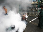 La Thaïlande fait des efforts pour endiguer l'épidémie de la dengue