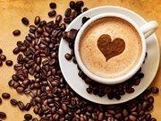 Croissance impressionnante des exportations nationales de café dans de nombreux marchés
