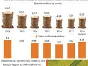 Le riz vietnamien conquiert le marché mondial