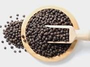 Fort recul du prix à l'export du poivre