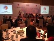 Pour promouvoir les liens entre les entreprises d'IDE et celle du Vietnam