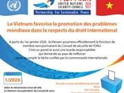 Le Vietnam favorise la promotion des problèmes internationaux