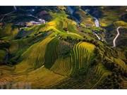 La splendeur des rizières en terrasse de Mu Cang Chai