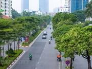 La fleur de lait, un des fleurs typiques de Hanoi, qui n'apparaît qu'en automne