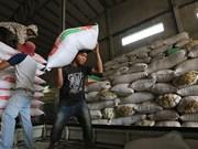 Les exportations de riz cambodgiennes continuent de baisser