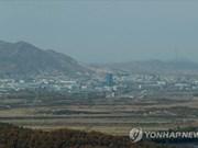 Les firmes sud-coréennes espèrent toujours une percée dans les projets intercoréens
