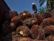 La Malaisie menace de boycotter des avions de chasse de l'UE